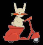 motoretta-coniglio